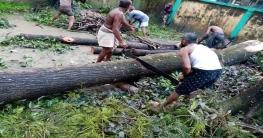 রামগতি উপজেলা কমপ্লেক্সে পরিচ্ছন্নতা অভিযান